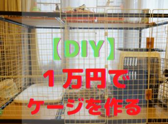 DIY犬のケージ